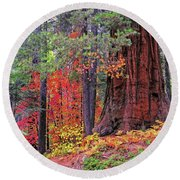 The Small And The Mighty Round Beach Towel