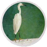 The Small White Heron - Snowy Egret Round Beach Towel