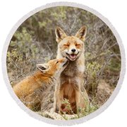 The Smiling Vixen And The Happy Kit Round Beach Towel