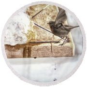 Round Beach Towel featuring the photograph The Snow Melts by Pennie  McCracken