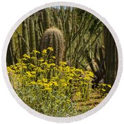 The Song Of The Sonoran Desert Round Beach Towel
