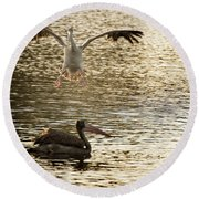 The Spot-billed Pelican Or Grey Pelican  Pelecanus Philippensis  Round Beach Towel