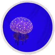 The Spotted Jellyfish Round Beach Towel