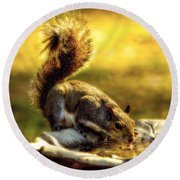 The Squirrel Round Beach Towel