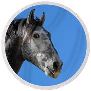 The Stallion Round Beach Towel