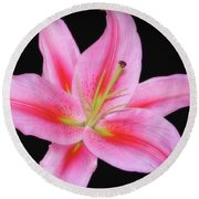 Round Beach Towel featuring the photograph The Stargazer by Sue Melvin