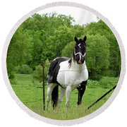 The Strong Horse Round Beach Towel