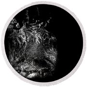 The Swamp King Round Beach Towel by Mark Andrew Thomas