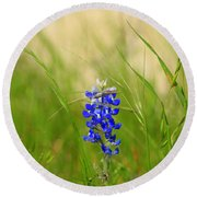 Round Beach Towel featuring the photograph The Texas Bluebonnet by Kathy White