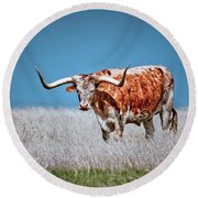 Round Beach Towel featuring the photograph The Texas Longhorn by Linda Unger