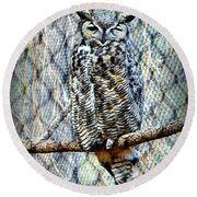 Round Beach Towel featuring the photograph The Textured Owl by AJ Schibig