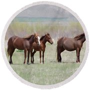 Round Beach Towel featuring the photograph The Three Amigos by Benanne Stiens