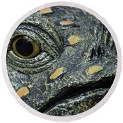 The Toad In The Garden Round Beach Towel