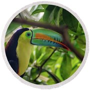 The Toucan Round Beach Towel