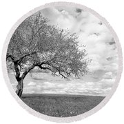 The Tree On The Hill Round Beach Towel