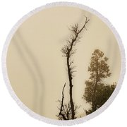 The Trees Against The Mist Round Beach Towel