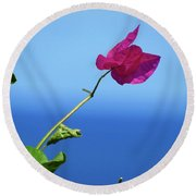 The Tropical Bloom Round Beach Towel