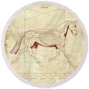 The Trot - The Horse's Trot Revealed Round Beach Towel
