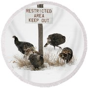 The Turkey Patrol Round Beach Towel