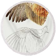 The Upper Side Of The Pheasant Wing Round Beach Towel