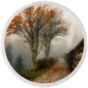 Round Beach Towel featuring the photograph The Wall by Norman Peay