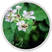 The Wasp Round Beach Towel