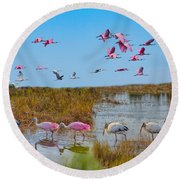 The Wetlands Round Beach Towel