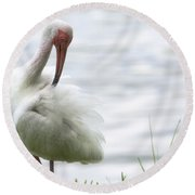 The White Ibis  Round Beach Towel