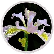 The Wild Iris Round Beach Towel