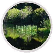 The Willows Round Beach Towel