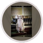 The Winery Cat Round Beach Towel