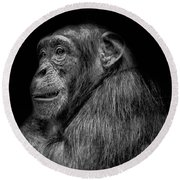 The Wise Chimp Round Beach Towel
