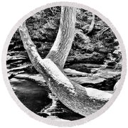 The Wishbone Tree Bw Round Beach Towel