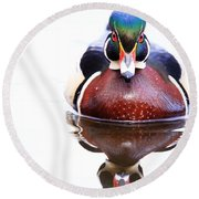 Round Beach Towel featuring the photograph The Wood Duck Look by Lynn Hopwood