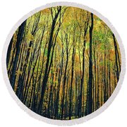 Round Beach Towel featuring the photograph The Woods In The North by Michelle Calkins