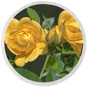 The Yellow Rose Family Round Beach Towel by Daniel Hebard
