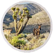 The Zebra Burro Round Beach Towel