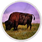 Round Beach Towel featuring the photograph Theodore Roosevelt National Park 008 - Buffalo by George Bostian