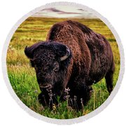 Round Beach Towel featuring the photograph Theodore Roosevelt National Park 009 - Buffalo by George Bostian