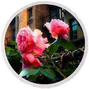 There Is A Rose In Spanish Harlem Round Beach Towel by Miriam Danar