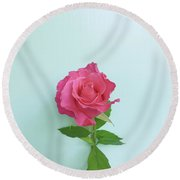 Round Beach Towel featuring the photograph There Is Simply The Rose by Cindy Garber Iverson