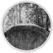Round Beach Towel featuring the photograph Thinking Tree- by JD Mims