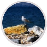 This Gull Has Flown Round Beach Towel by John Freidenberg