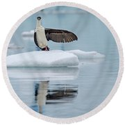 Round Beach Towel featuring the photograph This Way by Tony Beck