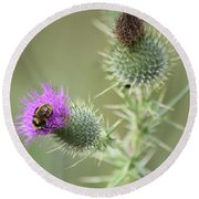 Thistle And Bee 1 Round Beach Towel