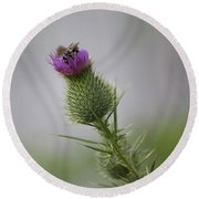 Thistle And Bee 2 Round Beach Towel