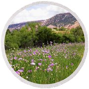 Thistles In The Canyon Round Beach Towel