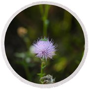 Thistles Morning Dew Round Beach Towel by Christopher L Thomley