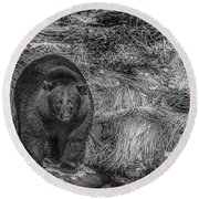 Thornton Creek Black Bear Round Beach Towel