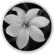 Threadleaf In Black And White Round Beach Towel